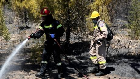 Εύβοια: Φωτιά στην Κάρυστο