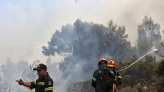 Κέρκυρα: Πυρκαγιά σε δασική έκταση στο Τσουκαλιό