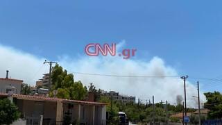 Φωτιά στο Λαύριο: Φωτογραφίες και βίντεο από το σημείο