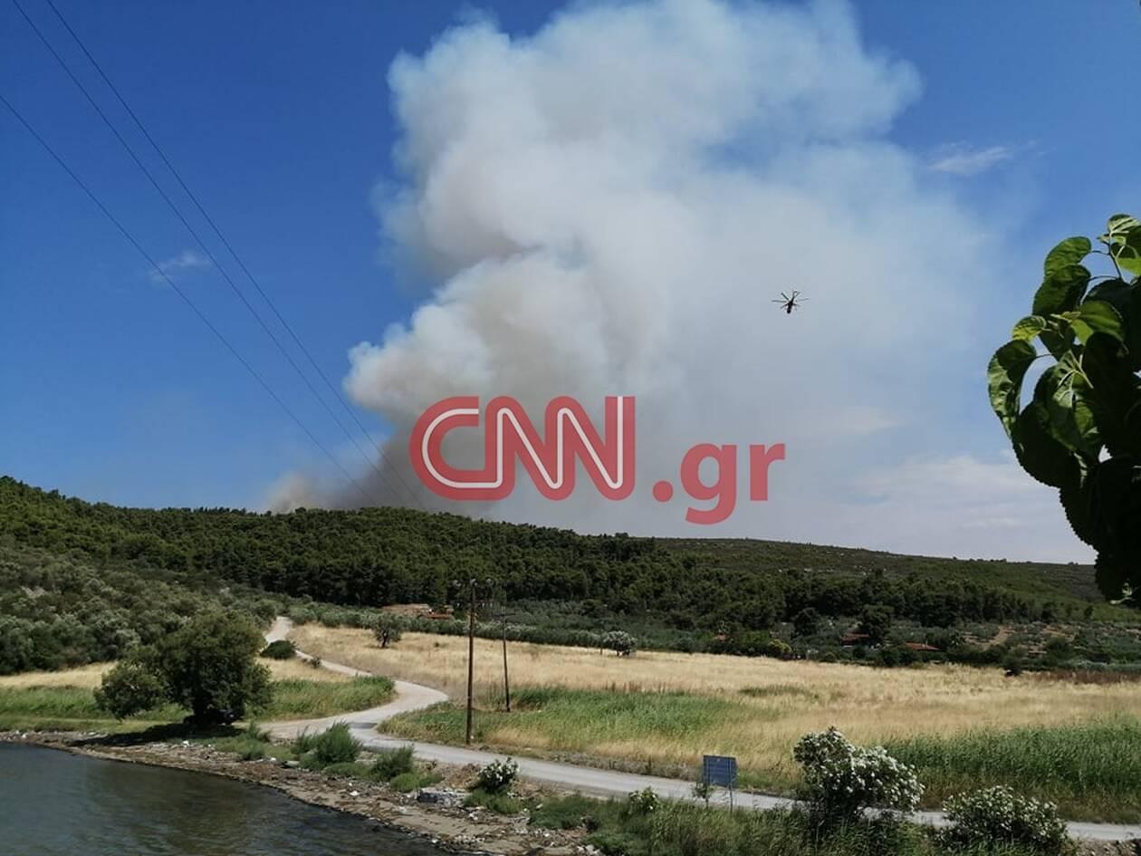 https://cdn.cnngreece.gr/media/news/2020/07/16/227452/photos/snapshot/fotia.jpg