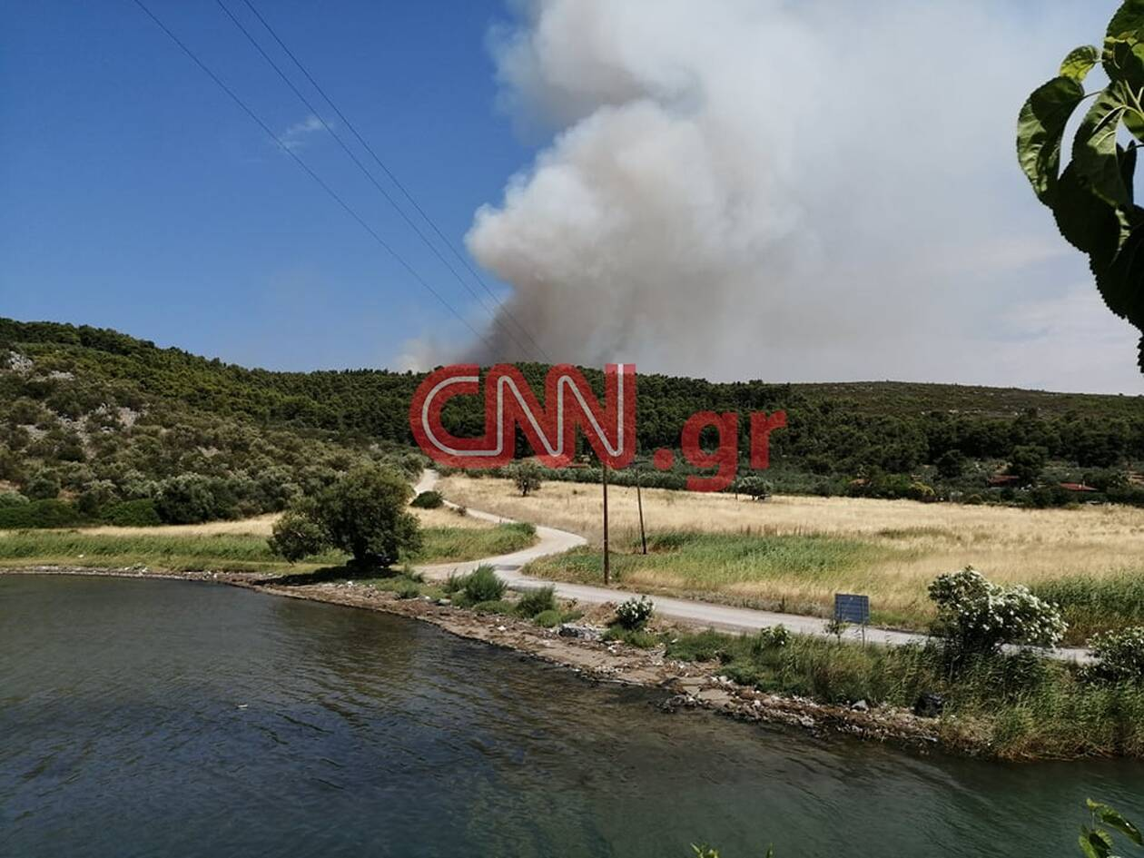 https://cdn.cnngreece.gr/media/news/2020/07/16/227452/photos/snapshot/fotia2.jpg