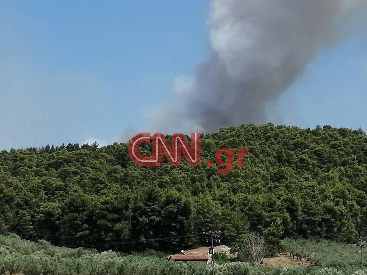 https://cdn.cnngreece.gr/media/news/2020/07/16/227452/photos/snapshot/fotia4.jpg