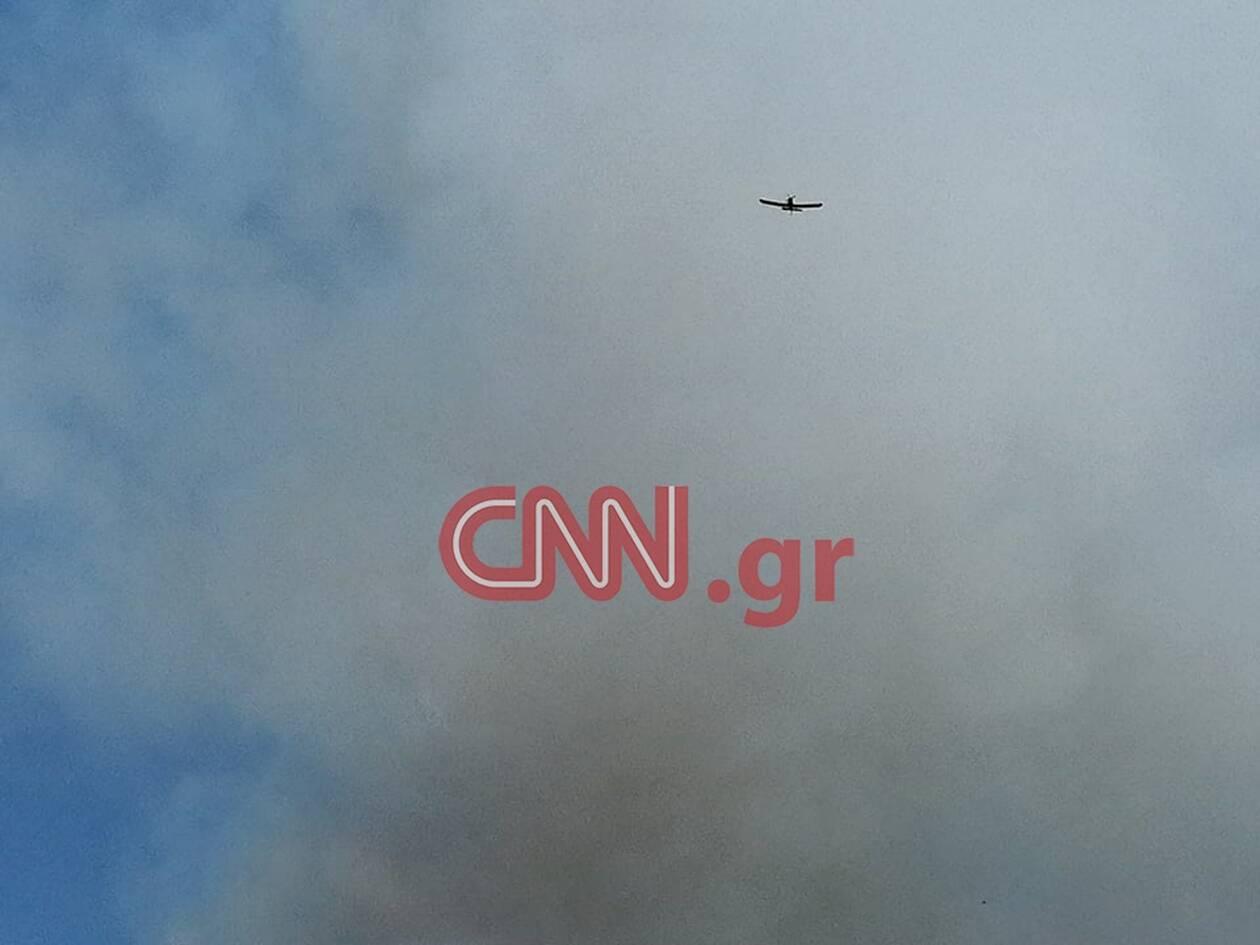 https://cdn.cnngreece.gr/media/news/2020/07/16/227452/photos/snapshot/fotia5.jpg