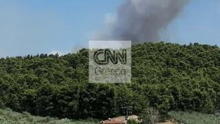 Λαμία: Μεγάλη πυρκαγιά στο Θεολόγο της Φθιώτιδας