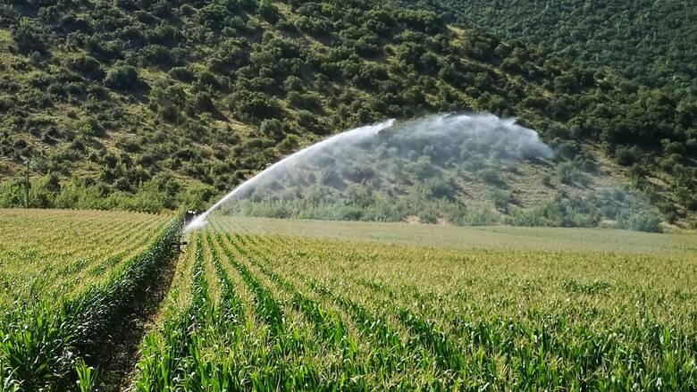 Τον κίνδυνο ερημοποίησης της Θεσσαλίας λόγω διάβρωσης του εδάφους επισημαίνει μελέτη