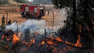 Μεγάλη φωτιά στην Άνδρο - Σε ετοιμότητα για εκκένωση δύο οικισμών
