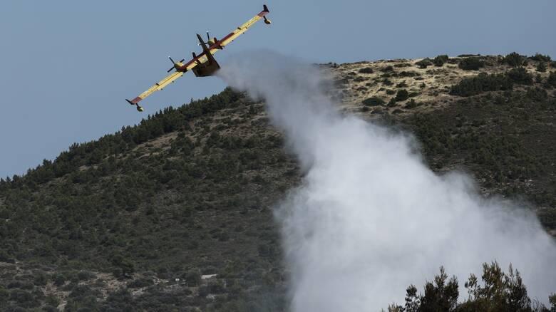 Πυρκαγιά στην Άνδρο: Εκκενώθηκε προληπτικά ο οικισμός Καλαμάκι