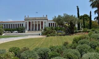 Με 6.000 νέα φυτά ολοκληρώθηκε η ανάπλαση του κήπου του Εθνικού Αρχαιολογικού Μουσείου