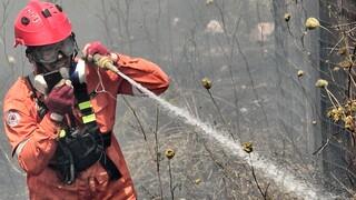 Φωτιά τώρα σε δασική έκταση στο Κιάτο