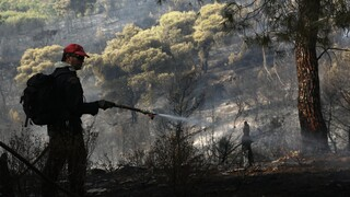 Δύσκολη νύχτα στη Μυτιλήνη: Μαίνεται η φωτιά κοντά στον Άγιο Ραφαήλ