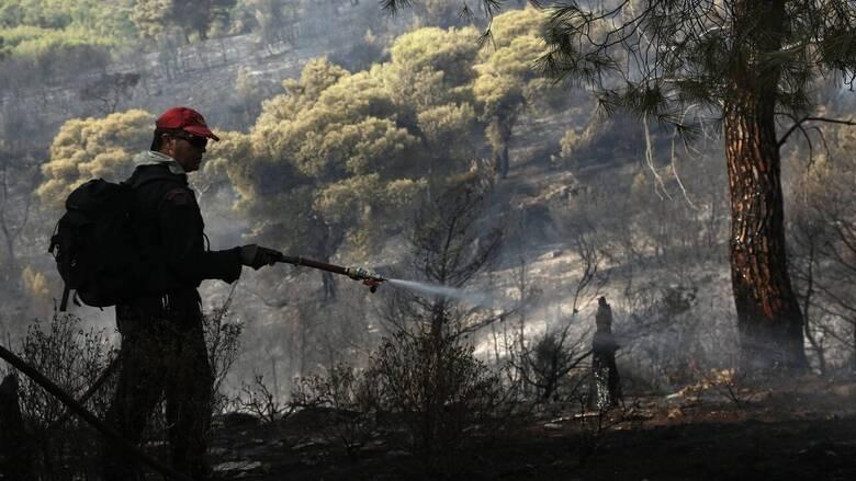 Φωτιά στο Πεταλίδι Μεσσηνίας - Εκκενώθηκε ο οικισμός Μαθία