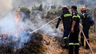 Πολύ υψηλός ο κίνδυνος πυρκαγιάς για σήμερα (χάρτης)