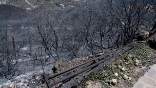 Εισαγγελική παρέμβαση μετά τις αποκαλύψεις για τις φωτιές σε Κύθηρα - Μάνη το 2017