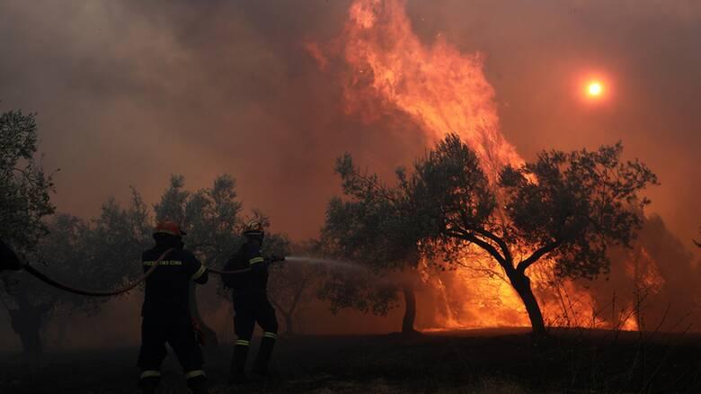 Φωτιά στην Κορινθία: Εκκενώθηκε τέταρτος οικισμός - Ενισχύονται οι δυνάμεις
