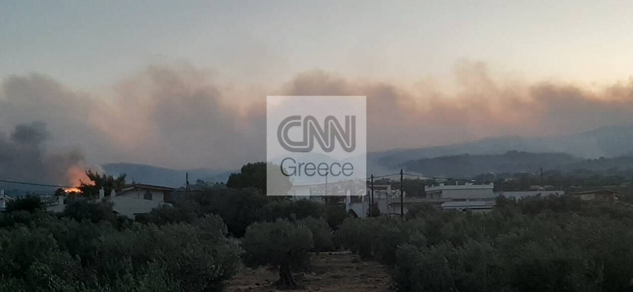 https://cdn.cnngreece.gr/media/news/2020/07/22/228211/photos/snapshot/5f1887657218c.jpg
