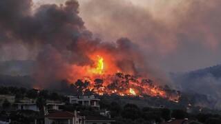 Φωτιά στην Κορινθία: Ολονύχτια μάχη με τις φλόγες - Ξεκίνησαν οι ρίψεις νερού