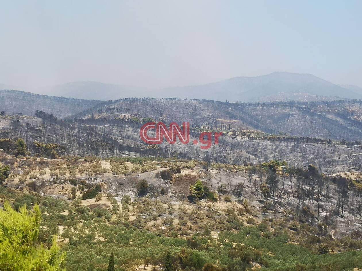 https://cdn.cnngreece.gr/media/news/2020/07/23/228271/photos/snapshot/109926549_743931463085014_1071924159186891637_n.jpg