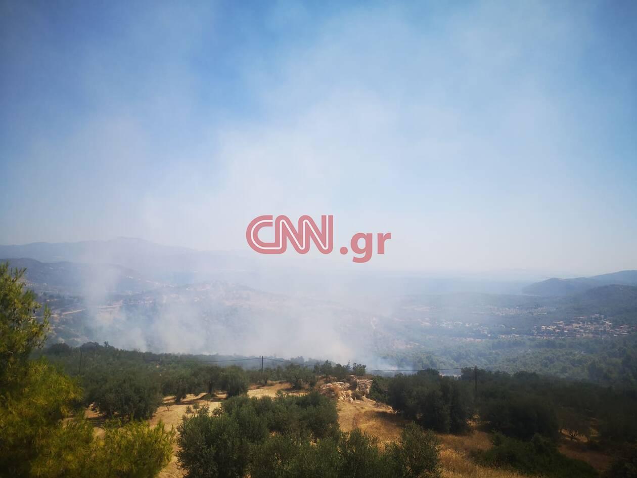 https://cdn.cnngreece.gr/media/news/2020/07/23/228271/photos/snapshot/115928088_562158704454037_7369512079300624428_n.jpg