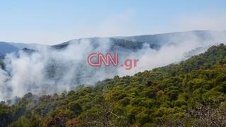 Φωτιά στις Κεχριές: Καρέ - καρέ η δεύτερη μέρα της «μάχης» με τις φλόγες