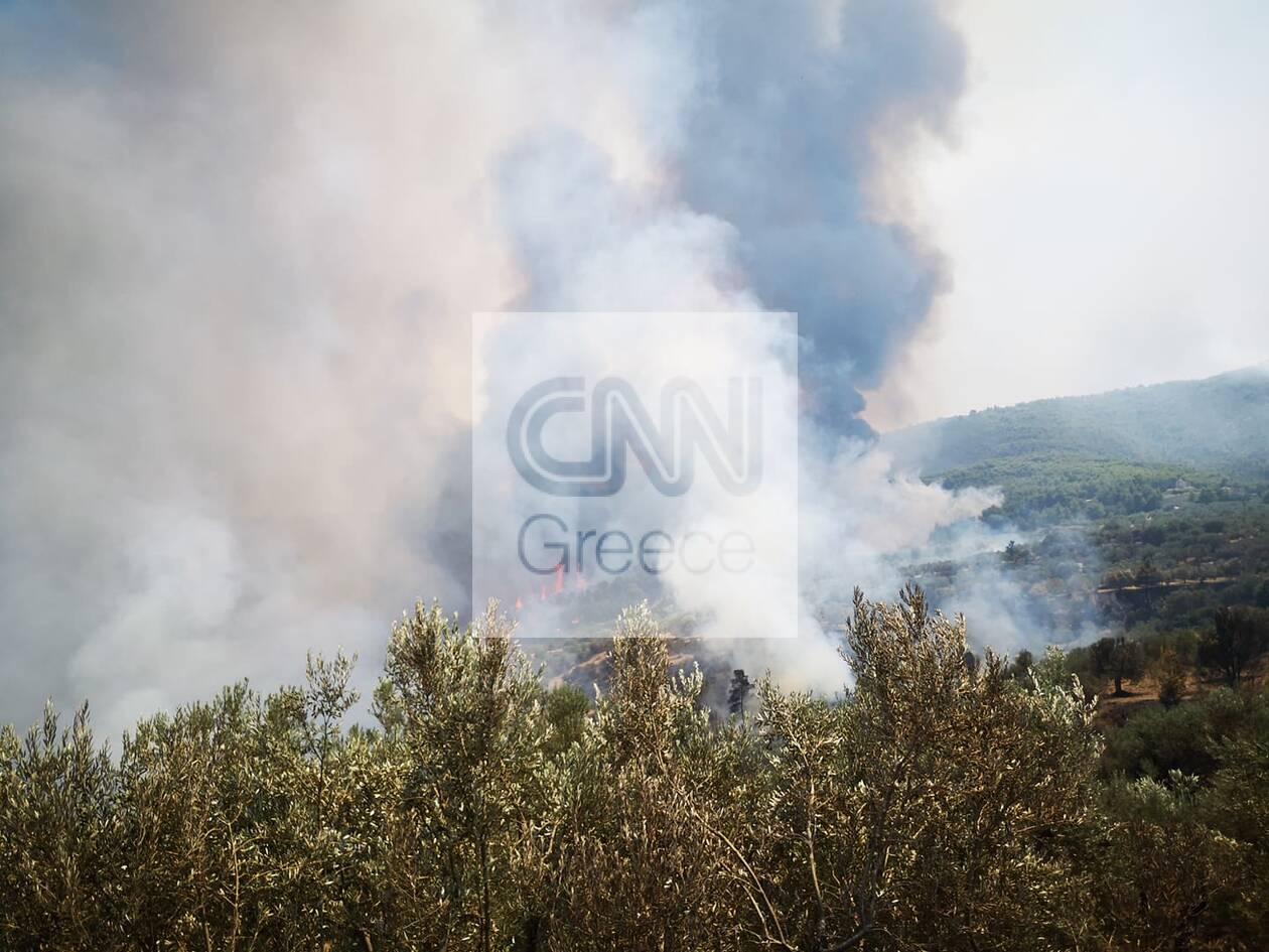 https://cdn.cnngreece.gr/media/news/2020/07/23/228339/photos/snapshot/115824781_1039064086537725_1151045884815483058_n.jpg