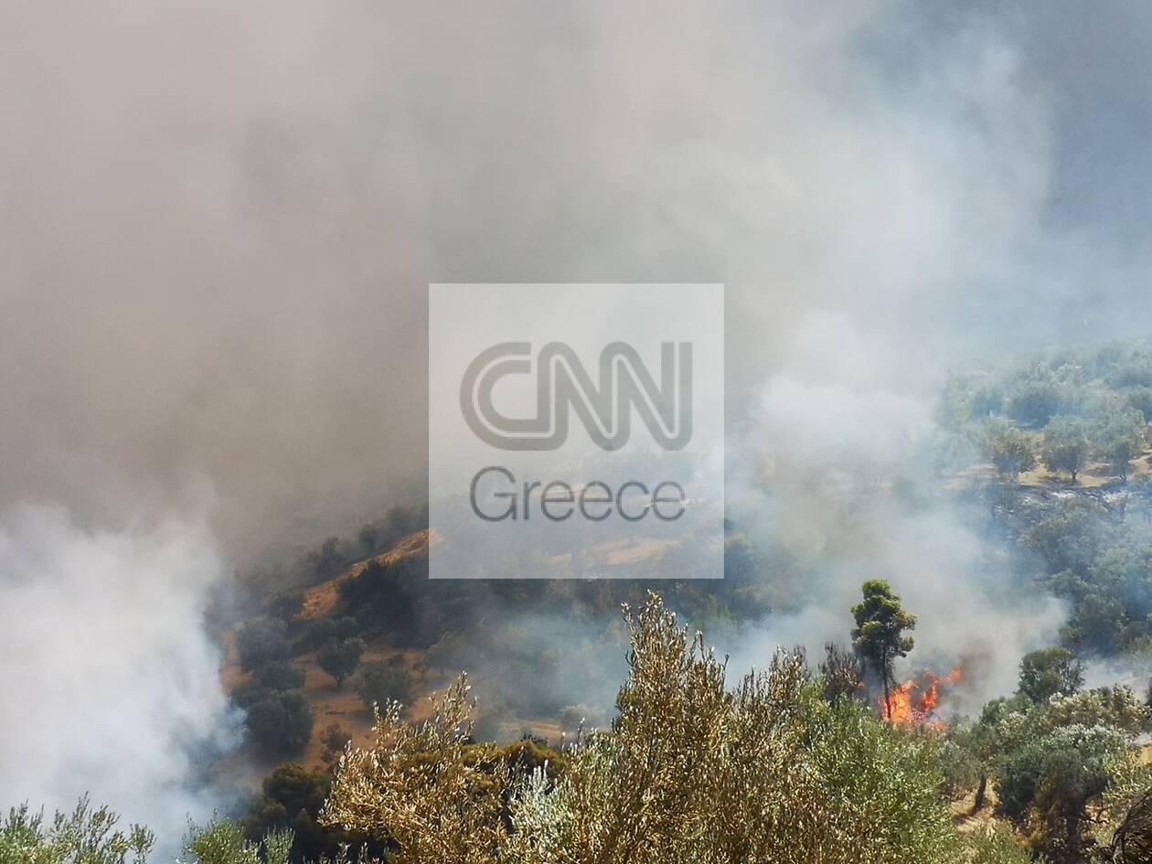 https://cdn.cnngreece.gr/media/news/2020/07/23/228339/photos/snapshot/115960393_477385269803115_3910864018635467367_n.jpg