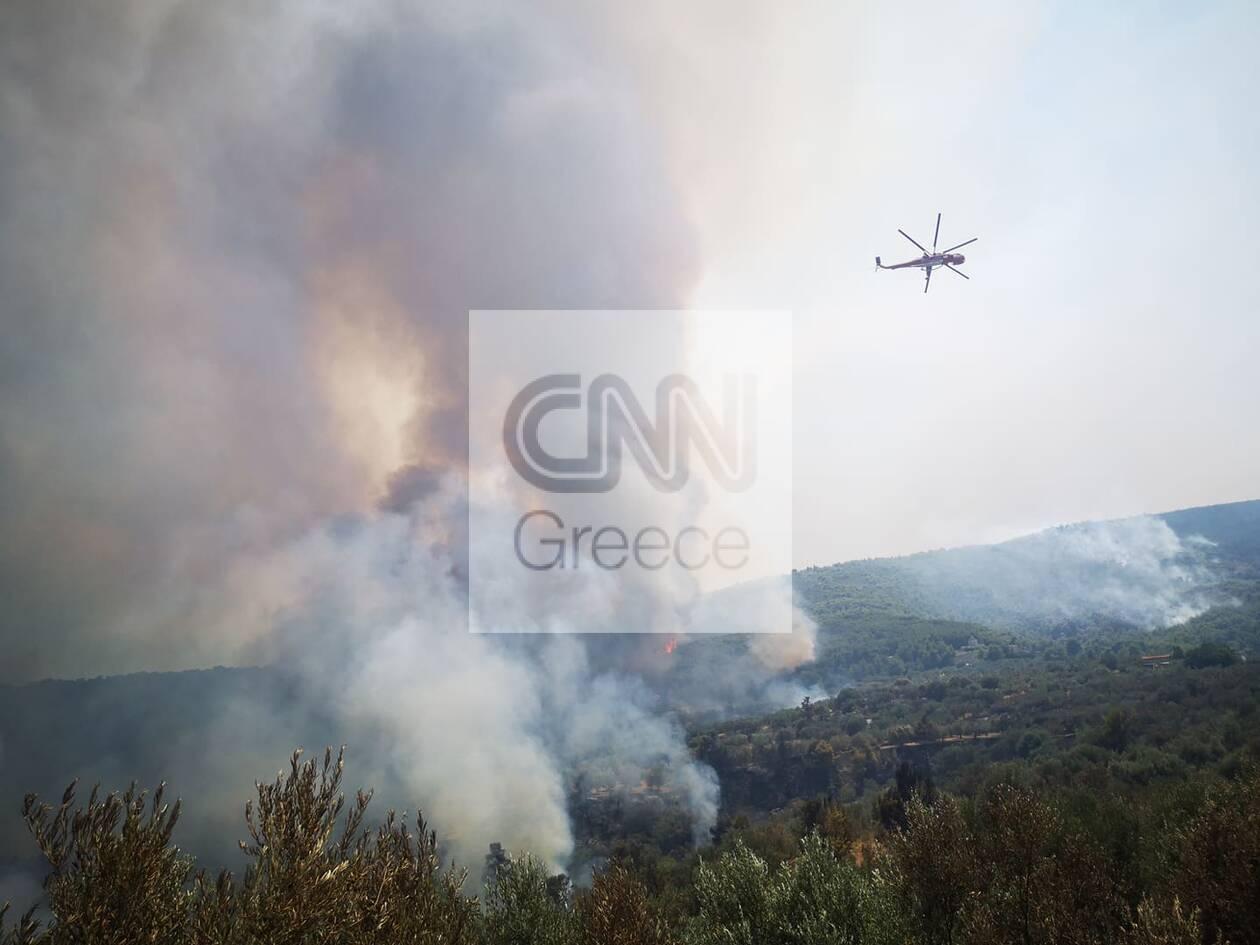 https://cdn.cnngreece.gr/media/news/2020/07/23/228339/photos/snapshot/116045388_285925542732561_1769902167801479977_n.jpg