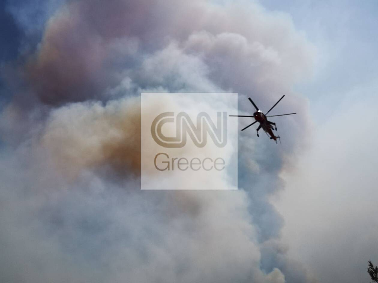 https://cdn.cnngreece.gr/media/news/2020/07/23/228346/photos/snapshot/115823779_2394974907476997_6546313144901713932_n.jpg