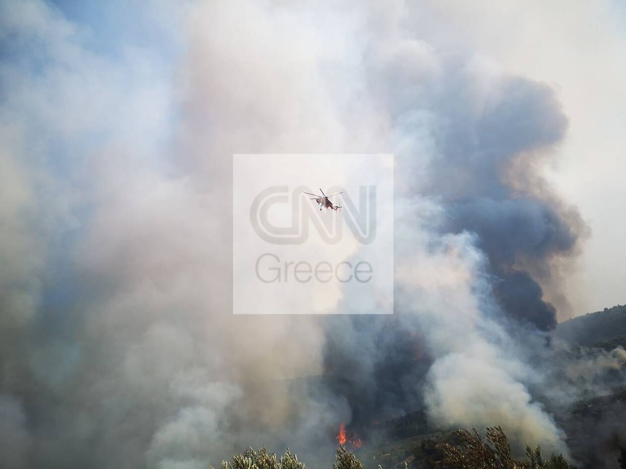 https://cdn.cnngreece.gr/media/news/2020/07/23/228346/photos/snapshot/115829677_328472891519553_8929529928559849518_n.jpg