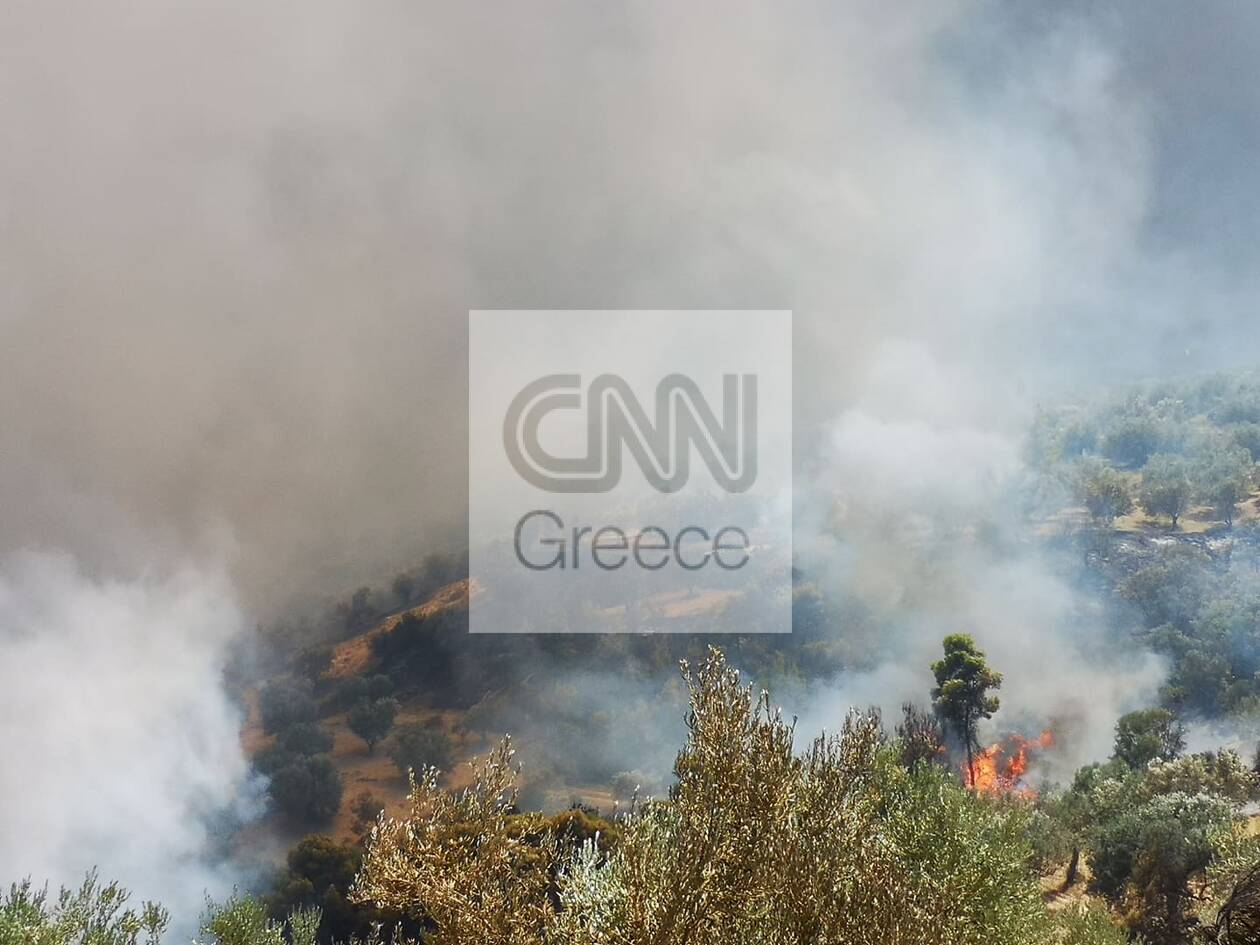https://cdn.cnngreece.gr/media/news/2020/07/23/228346/photos/snapshot/115960393_477385269803115_3910864018635467367_n.jpg