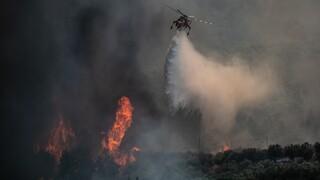 Φωτιά Κεχριές: Συγκλονίζουν οι εικόνες από το μέτωπο και τις σημαντικές καταστροφές