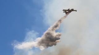 Πολιτική Προστασία: Πολύ υψηλός ο κίνδυνος πυρκαγιάς το Σάββατο