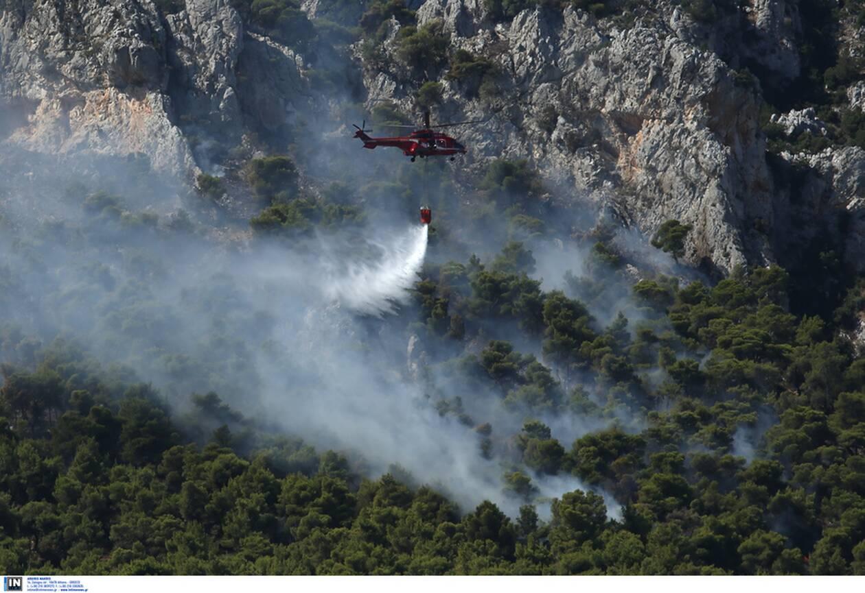 https://cdn.cnngreece.gr/media/news/2020/07/24/228471/photos/snapshot/fotia-kexries-1.jpg