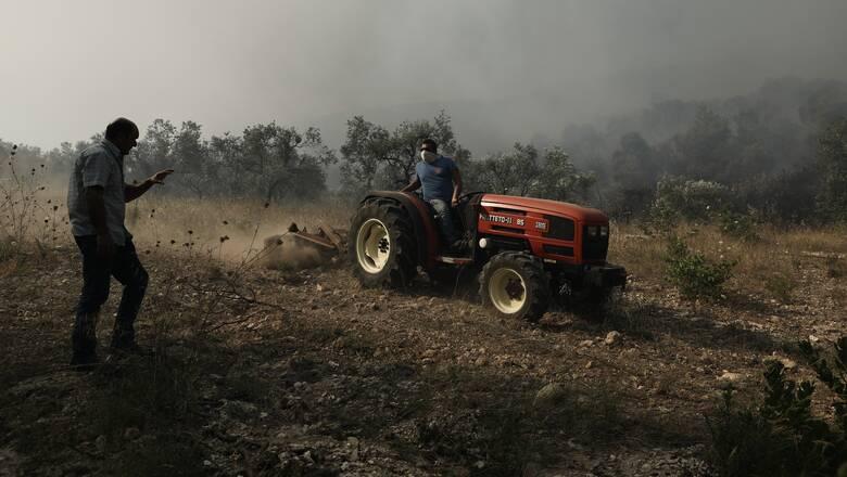 Φωτιά στις Κεχριές: Διάσπαρτες εστίες εξακολουθούν να καίνε για πέμπτη μέρα