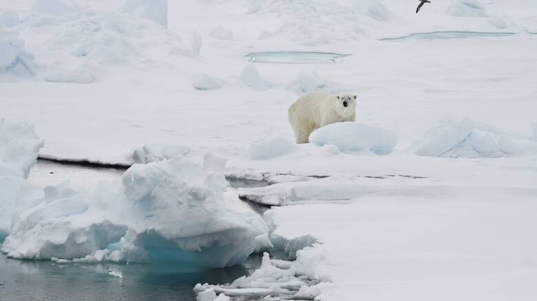 Νορβηγία: Ρεκόρ ζέστης στο αρχιπέλαγος Σβάλμπαρντ
