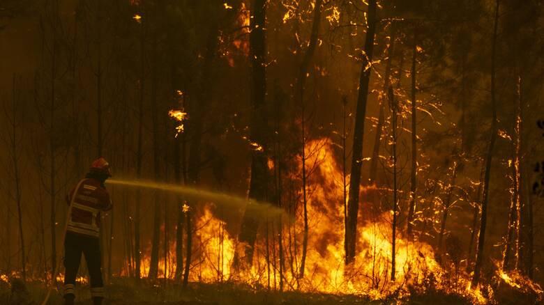 Πορτογαλία: Ανεξέλεγκτη πυρκαγιά στα κεντρικά της χώρας - Κινδυνεύουν σπίτια