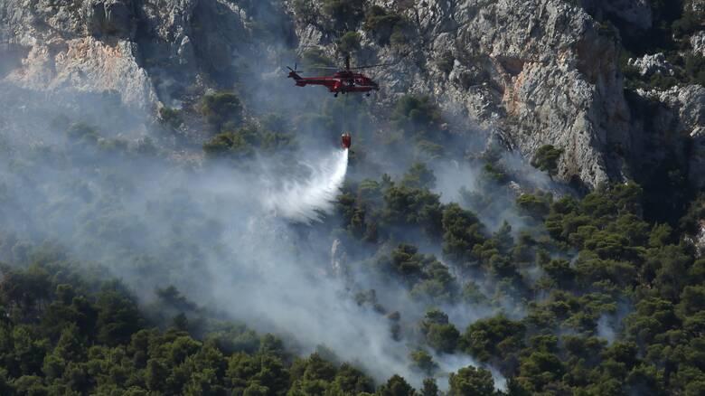 Μεγάλη φωτιά στην Ηλεία - Ισχυροί άνεμοι στην περιοχή