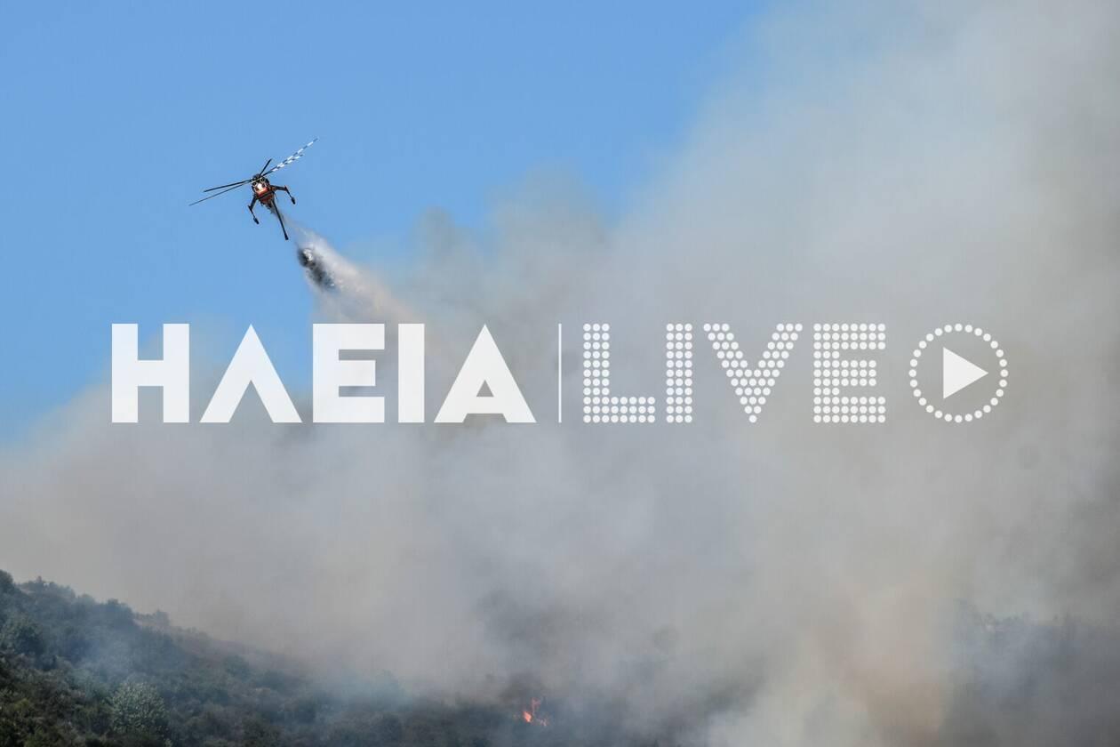 https://cdn.cnngreece.gr/media/news/2020/07/26/228628/photos/snapshot/fotia_kleindia-5.jpg