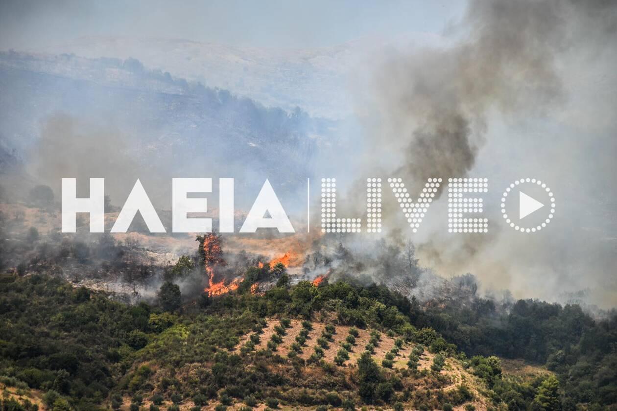 https://cdn.cnngreece.gr/media/news/2020/07/26/228628/photos/snapshot/fotia_kleindia-7.jpg