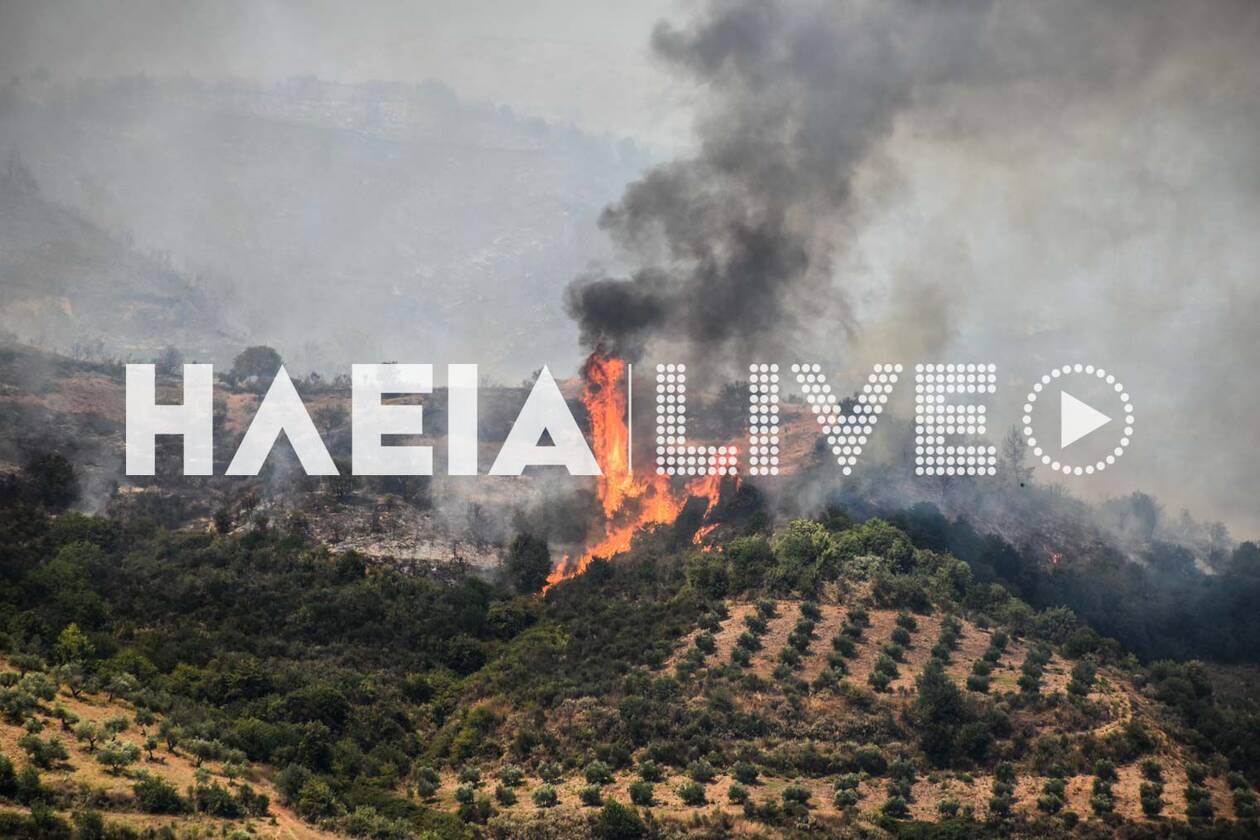 https://cdn.cnngreece.gr/media/news/2020/07/26/228644/photos/snapshot/fotia_kleindia-6.jpg
