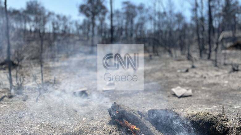 Αυτοψία CNN Greece στις Κεχριές: Στάχτη χιλιάδες στρέμματα γης