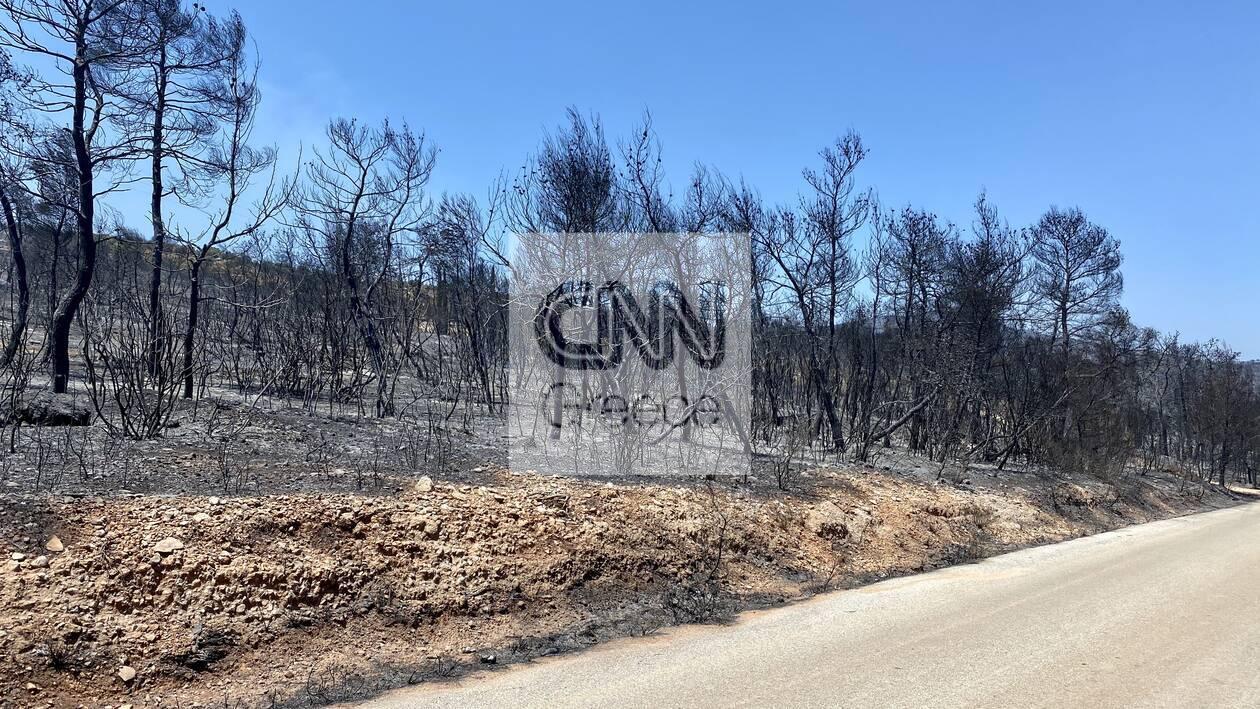 https://cdn.cnngreece.gr/media/news/2020/07/26/228645/photos/snapshot/5f1da79a3ef13.jpg