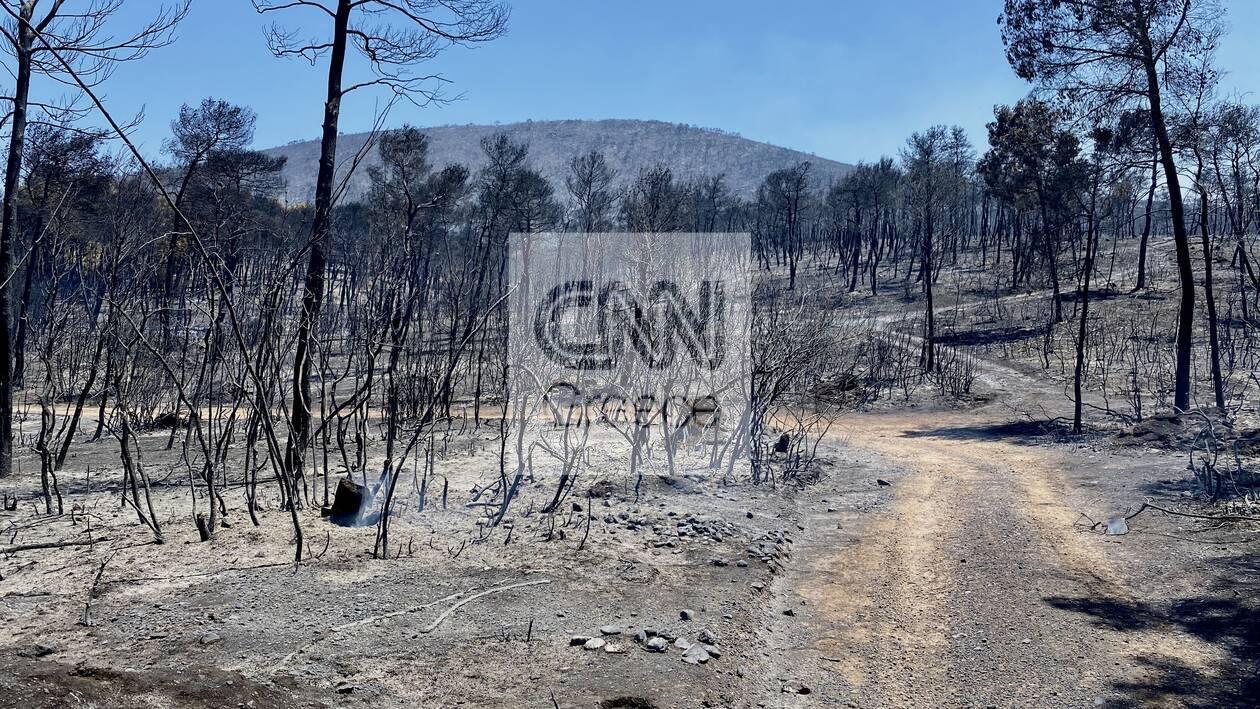 https://cdn.cnngreece.gr/media/news/2020/07/26/228645/photos/snapshot/5f1da79c2095e.jpg