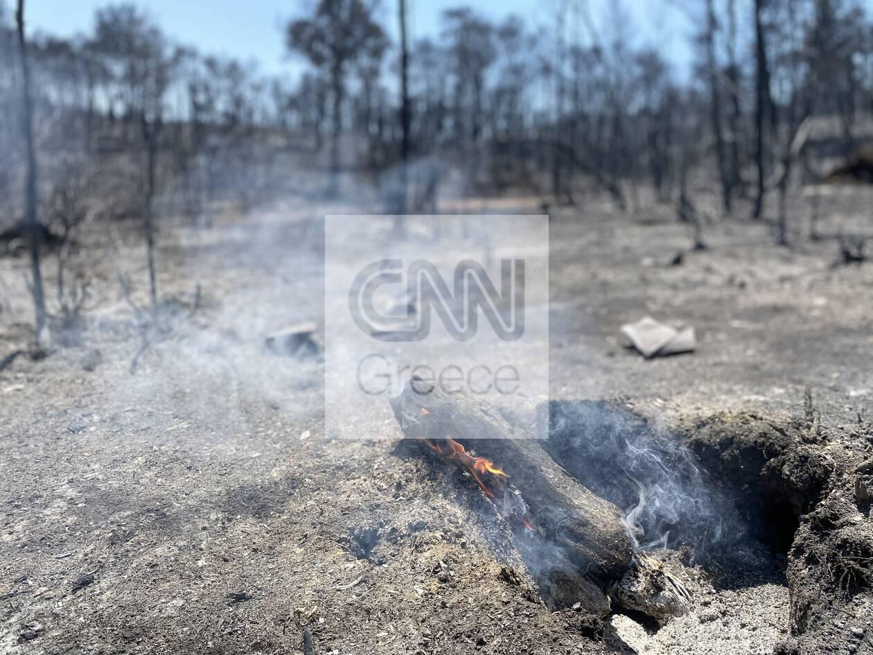 https://cdn.cnngreece.gr/media/news/2020/07/26/228645/photos/snapshot/5f1da79c89143.jpg