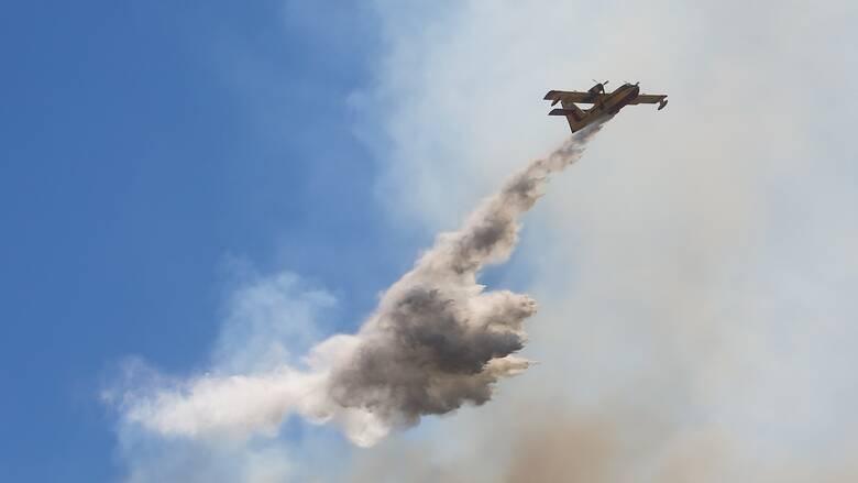 Δύσκολο το έργο της Πυροσβεστικής: 51 πυρκαγιές το τελευταίο εικοσιτετράωρο