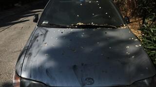 Στέφανος Χίος: Ο δράστης που με πυροβόλησε φορούσε κουκούλα και είχε σχιστά μάτια