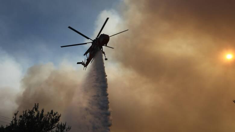 Μαίνεται η φωτιά στην Επίδαυρο - Ενισχύονται οι δυνάμεις της Πυροσβεστικής