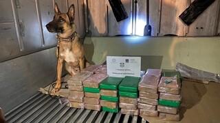 Μεγάλο φορτίο κοκαΐνης στα χέρια της ΑΑΔΕ