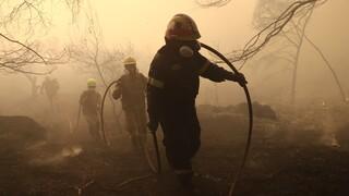 Υπό μερικό έλεγχο η φωτιά στην Επίδαυρο - 48 δασικές πυρκαγιές το τελευταίο 24ωρο