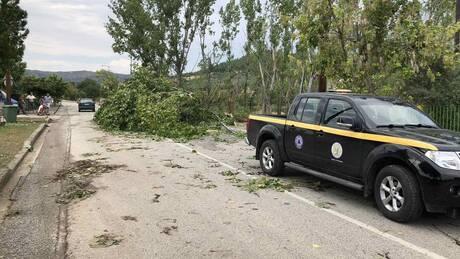 Καιρός: Το μπουρίνι προκάλεσε ζημιές στα Τρίκαλα