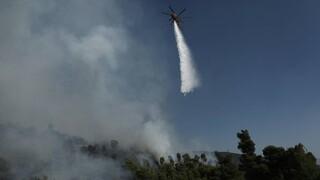 Σε εξέλιξη φωτιά στο Ναύπλιο